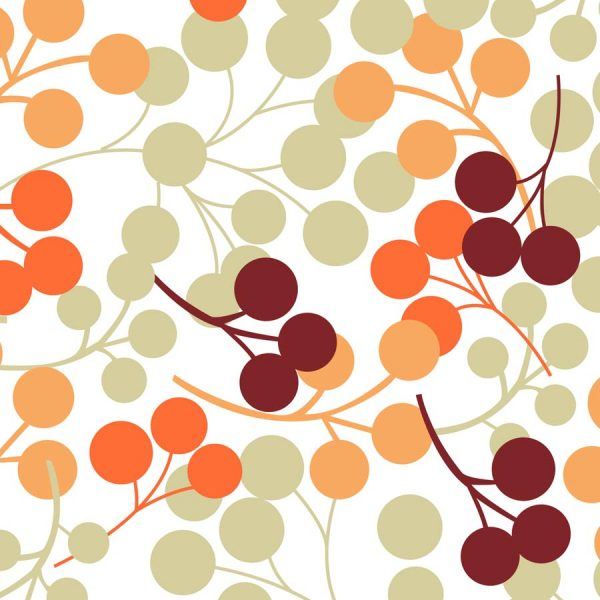 Berries Orange Roller Blind 2