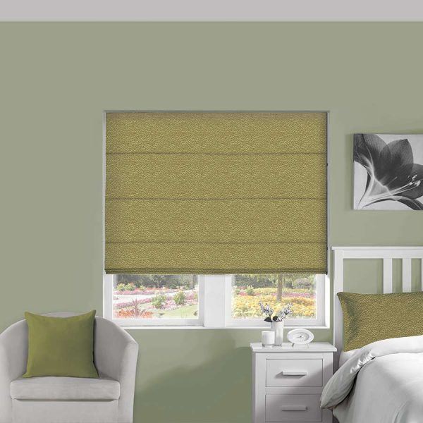Ostrich Olive Roman Blind 1